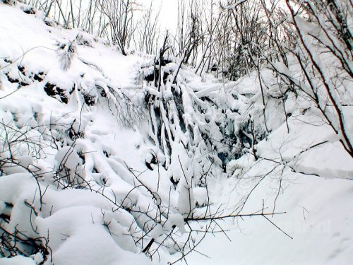 冬の白帆の滝