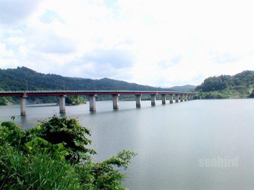 遊歩道から見る滝見大橋
