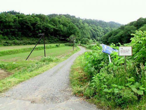 興勢橋を渡ってすぐの林道分岐