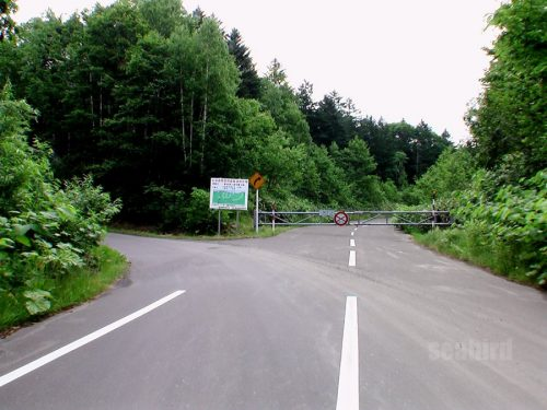 二つ目の林道分岐を左へ