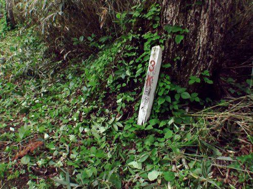 ピッシリ山山頂まで3kmの看板