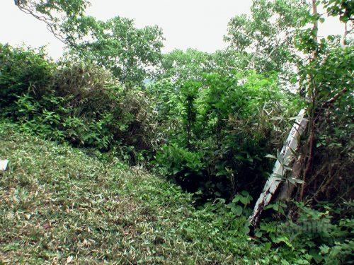 ピッシリ双龍の滝への滝への下り口
