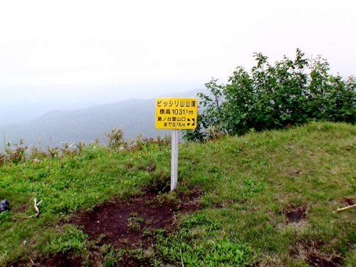 ピッシリ山山頂の看板