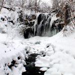 スノーシューを履いて滝野公園を散策