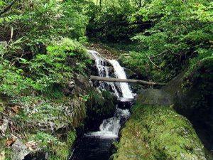 稲倉石の滝