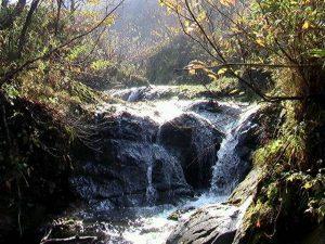 稲倉石川本流の滝
